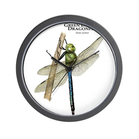 Green Darner Dragonfly Wall Clock