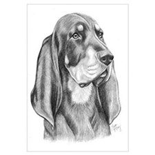 Black & Tan Coonhound