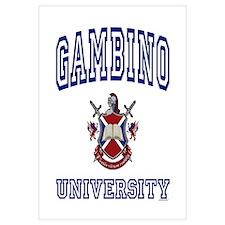 GAMBINO University