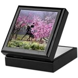 Spring Half Pass Dressage Horse Keepsake Box