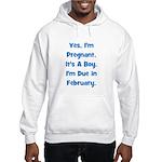 Pregnant w/ Boy due February Hooded Sweatshirt