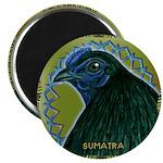 """Framed Sumatra Rooster 2.25"""" Magnet (100 pack"""