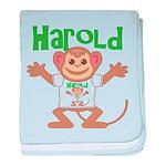 Little Monkey Harold baby blanket