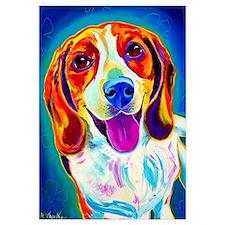 Beagle #3