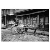 Milk Delivery Cart. New Orleans, 1903