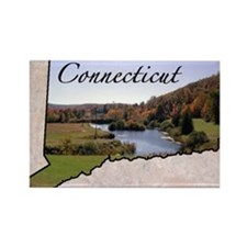 Cute Connecticut Rectangle Magnet (10 pack)