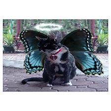 Fairy Kitty-Angel