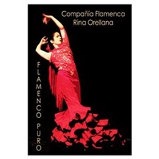 Cute Flamenco Wall Art