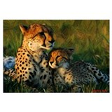 Cheetah and Cub Color Drawing