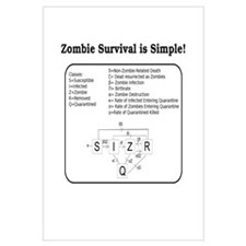 """Zombie Mathematical Model"""