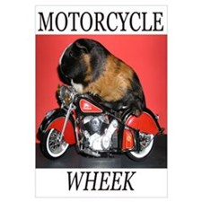 Motorcycle Wheek!