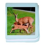 Doe feeding triplets baby blanket