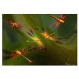 DRAGONFLIES: 14 x 10