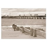 Cute Piers and boardwalks Wall Art