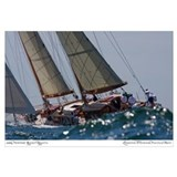 Sailing Wall Art