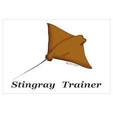 Stingray Trainer