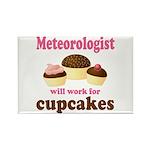 Funny Meteorologist Rectangle Magnet