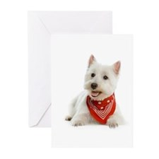 Westie With Red Bandana Greeting Cards (Pk of 20)