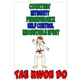 Tenets Of Tae Kwon Do