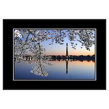 Morning Blossom 18x24