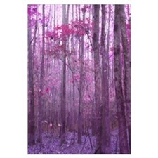 Violet Winter Woods