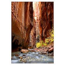 Cute Zion national park Wall Art