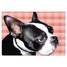 Red Plaid Boston Terrier