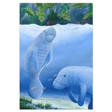 Cute Manatee Wall Art
