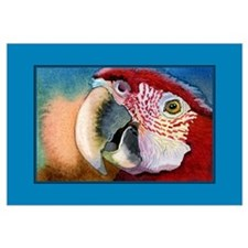 SCARLET RED MACAW PARROT