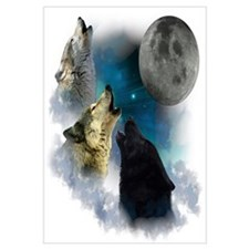 Northern Lights Wolfs Howling