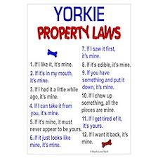Yorkie Property Laws