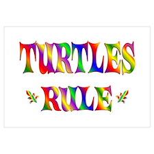 TURTLES RULE