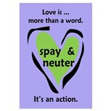 Love Is More Than An Action