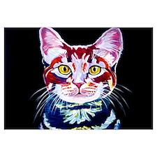 Cat #14