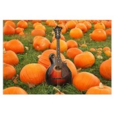 The Gibson in a Pumpkin Patch
