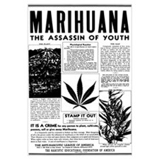 MARIHUANA: The Assassin of Youth n