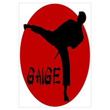 Gaige Martial Arts