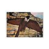 Raptors Rectangle Magnet (10 pack)