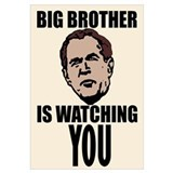 Bush Big Brother