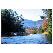 Autumn Mountains Stream