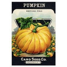 Pumpkin antique seed packet