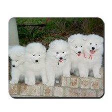 Samoyed Puppies Mousepad