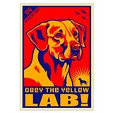 Obey the Yellow LAB! 06