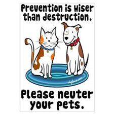 Prevention is Wiser