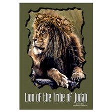 Lion of Judah 11