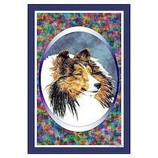 Shetland Sheepdog Designer