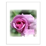 Love Rose Small Poster
