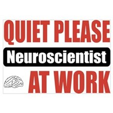 Neuroscientist Work