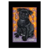of Black Pug