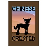 Craftsman Chinese Crested